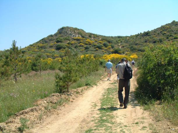 Walking Gallipoli